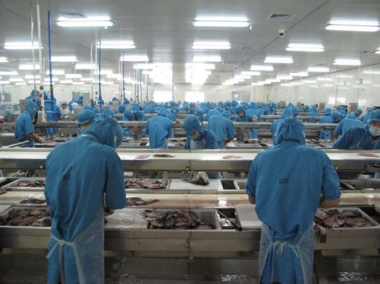 Industry Fish Production